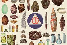 Collections / by Mattias Käll illustration