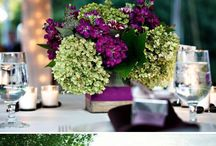 Tropical Purple and greenery