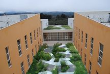 Roof gardens design