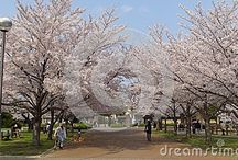 Available at Dreamstime