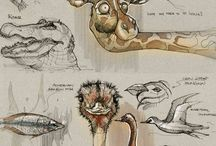 References || Animals Sketches