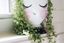 house o plants