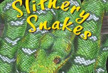 Slithery Snakes / Guess what kind of snake the beautifully patterned scaly skin belongs to. Fascinating facts and visually exciting, this is a new take on some of nature's most amazing creatures.