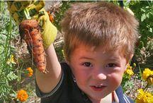 nourish | outdoor classroom/school gardens