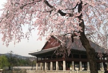 Kor Traditional Architecture