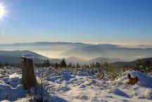 Winter im Albtal / Das Albtal liegt im Nordschwarzwald. Es ist ein ideales Wintersportgebiet zum Langlaufen, Rodeln und Schneeschuhwandern. Aber auch große und kleine Skianfänger finden besonders in Bad Herrenalb und in Dobel leichte Einsteiger-Abfahrten.