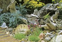 Coastal Garden / Gardens well suited to coastal climates/\.