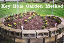 Key Hole Gardens / These are circular gardens that are built up.