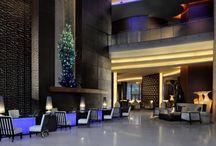 Luxury Hotels  / The Best Luxury Hotels around the world
