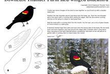 birds diy