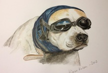 Drawings / Pencil and pastel drawings made by me. Here's my website: http://kjerstiko.wix.com/pastelportrait