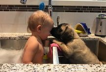 Dogs and Children - Craft and Food Ideas