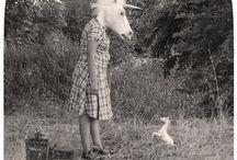 En busca del unicornio perdido / Unicornio