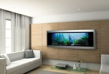 Fish Tanks / by TourSpecGolf .com