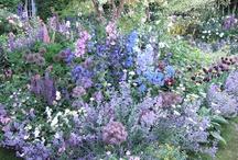 Blauer Garten, Blue Garden, Feng Shui Career,Metal,water,north / Blauer Garten, Blue Garden, Feng Shui Career,Metal,water,north