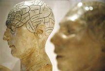 Mind You {INFJ} etc / Left handed, mindful, expressive, hsp INFJ. Pins of INFP, INTP, ESFJ, ISTP, INTJ, ESFP etc too. Psychology, anxiety, mental health, myers briggs/mbti  / by Rubi Elizabeth Moreno