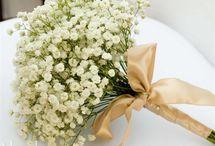 Kukkakauppiaan unelmat
