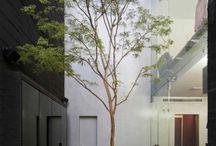 Arquitetura - Jardim de inverno