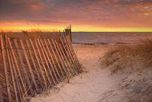 Life's a BEACH! / by Marybeth Moleski