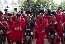 Hornbill Festival / Images taken by the PreciousMelove team during Hornbill Festival while building their brand