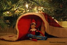 Holidays - Christmas Elf / by ScottandChelsea Miller