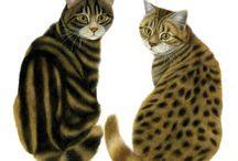 Animal Art 2D / by Leisa Shannon Corbett Art Studio