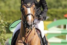 EQUISTA Famous Horses / www.equista.pl with passion for all that is equestrian