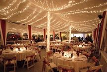 Wedding Venues in Central Florida / The perfect wedding venues to match that perfect dress, perfect jewelry, and most importantly, the perfect couple.  / by Swalstead Jewelers