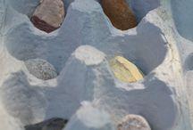 Rocks and Minerals Unit Study