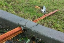 Joplin Tornado...We Survived / by Vicki Baker