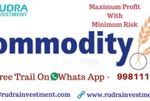 Commodity Tips Expert