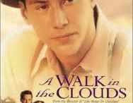 Romantic Drama / Somewhere in Time, An Affair to Remember, City of Angles, A Walk in the Clouds, Father Goose, Dear John