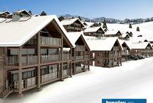 Fjäll Villor & Fjällhotell / 3D Visualisering - CAD ritningar  Fjäll Villor & Fjällhotell Pine Tree SKI Hotel Design & Construction