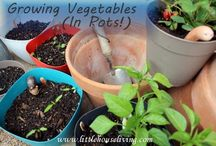 Gardening-Containers