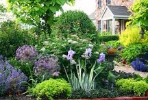 Gardens / Pretty gardens