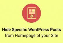 WordPress Guides & Tutorials