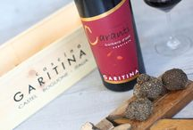 wine producer Piedmont