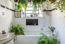 banheiro com planta