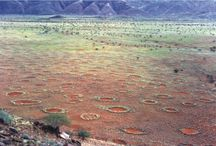 I cerchi delle fate nel deserto della Namibia / Natura