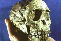 paleolítico inferior 2