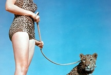 -Anything Leopard- / -in love with leopard print, weather it be clothes or furniture.-