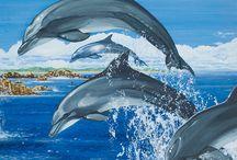 Hermosa imagen de delfines