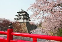 bucket list: japan / by Anyse