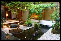 jardin interior / by Cecilia Carabajal