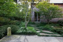 Landscaping - home / Landscaping ideas