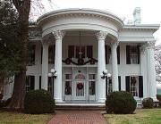 My Old Kentucky Home / by Cathy Gamble