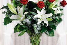Sultangazide Çiçekçi / sultangazide çiçekçi,online çiçek gönder,sultangazi çiçek sipraşi