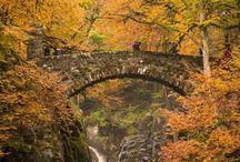 Fotografie Magischer Herbst