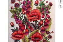 Blomstermandela