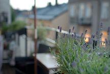 Odling och balkong